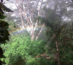 Belize-Botanic-Gardens
